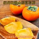 【ご家庭用わけあり】和歌山秋の味覚 富有柿約7.5kg