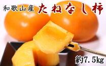 和歌山産のたねなし柿約7.5kg(M~2Lサイズおまかせ)【秋の味覚】