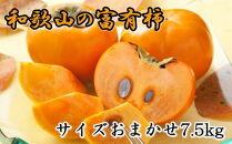 和歌山産富有柿約7.5kgサイズおまかせ