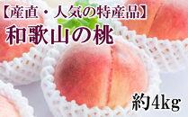 【産直・人気の特産品】和歌山の桃約4kg・秀品★2022年度発送★