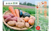【予約商品】農家で厳選!秋野菜おまかせセット(小)