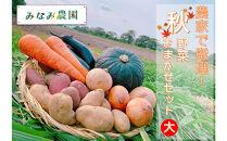 【予約商品】農家で厳選!秋野菜おまかせセット(大)