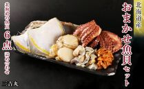 AS036【北海道産】海産物のプロが選ぶ!おまかせ魚貝セット