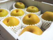 かねしん梨園の甘くてみずみずしい由布市庄内産の梨5kg(8~10玉)
