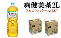 爽健美茶2Lペットボトル(6本入り×2ケース 12本)【3カ月定期便】