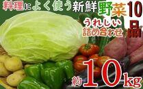 RK083 大家族(5~6人)向け!うれしい野菜10品詰め合わせ約10kg