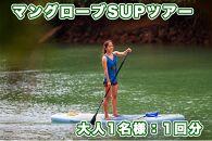 【大人用】マングローブSUPツアー体験チケット