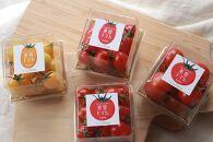 【12月発送開始】ドロップファームの美容トマト(R)6パック入