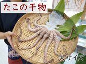 【南知多産】真蛸の干物 大1杯