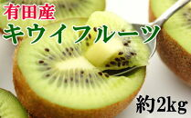 【人気】有田産キウイフルーツ約2kg(サイズおまかせ)