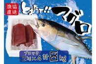 宮古島直送!獲れたて新鮮マグロ約8kg(ブロック2kg×4)