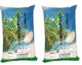 「コシヒカリ」5㎏×2袋!稲作を学ぶ学生が作ったお米