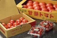 高級完熟トマトハヤシ&国産キーマカレー8個セット
