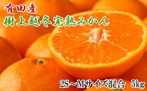 【濃厚・まろやか】有田産樹上越冬完熟みかん5kg(2S~Mサイズ混合・赤秀)