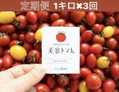 【定期便】美容トマト1kg箱!フルーツトマト専門農場から3ケ月連続でお届け!