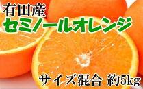 有田産セミノールオレンジ約5kg(サイズ混合・秀品)