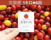 【定期便】美容トマト1kg箱!フルーツトマト専門農場から6ケ月連続でお届け!
