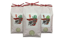 田の神様米(コシヒカリ)5kg×3袋【新米】
