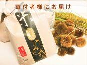 ◆【お米シェア】令和2年(2020)産農家直送近江米コシヒカリ5kg×1袋精米済