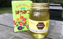 佐元養蜂場のはちみつ 国産蜂蜜 あかしあ