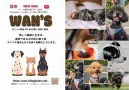 神戸生まれの新鮮な無添加ドライドッグフード『WANS』