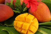 アップルマンゴー 2kg<宮古島マンゴー組合有志7農家からの選りすぐりの逸品>