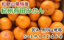 [訳ありご家庭用]紀州有田みかん10kg(S~Lサイズいずれかお届け)