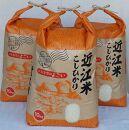 ◆【令和3年産】高島市安曇川特別栽培米近江米コシヒカリ 30㎏