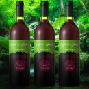 エル・グリーンファームの「やま庭のワイン」750ml×3本