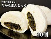 熊本特産品阿蘇高菜まんじゅう20個冷凍保存可