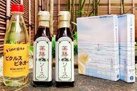 【鎌倉三留商店】ピクルスビネガー、薬膳ソース2本、鎌倉薬膳カレー2食