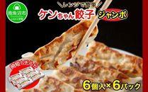 新潟県南魚沼市チルドジャンボ餃子6個入り×6パック計36個ケンちゃん餃子冷蔵中華点心惣菜ビールお取り寄せグルメ