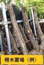 【2021年8月下旬からお届け】原木シイタケ榾木