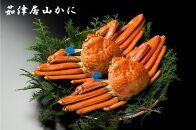 【城崎・神鍋】JTBふるさと納税旅行クーポン(30,000円分)