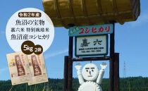 【令和2年産】(5㎏×2袋)魚沼の宝物 嘉六米特別栽培米魚沼産コシヒカリ