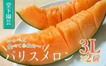 【先行予約】いっぺん食べてみねの~!赤肉メロン(3L×2)