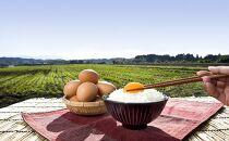 アスタキサンチン入り赤卵「高崎のめぐみ」120個