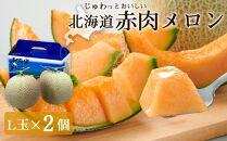 待つほどおいしい!北海道「赤肉メロン」L玉×2個(2021年7月~発送予定)