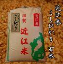 【令和2年産】近江米こしひかり30kg【玄米】 米粉付き