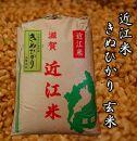 【令和2年産】近江米きぬひかり30kg【玄米】 米粉付き