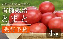 【先行予約】大雪山のミネラルが育てた『有機栽培とまと』4kg(7月中旬~発送開始予定)
