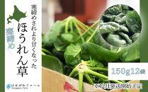 栄養たっぷり!寒締めほうれん草12束(12月発送開始予定)