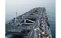 岬町海釣り公園・とっとパーク小島招待券セット【大人用】