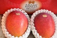 お日様の恵み。奄美のあま~い絶品マンゴー(1kg/秀品)贈答可【先行予約】【2021年発送分】