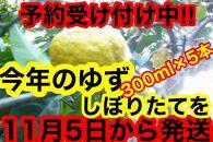 【訳あり】ゆずしぼり(無塩)300cc×5本
