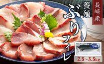 【AD002-NT】長崎産養殖ぶりフィレ