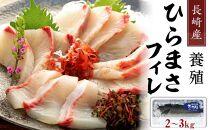 【AD003-NT】長崎産養殖ひらまさフィレ