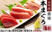 【AD004-NT】長崎産養殖本マグロ