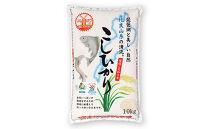 ◆高島市新旭産 特別栽培米 滋賀県認証環境こだわり米コシヒカリ白米10kg