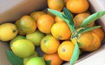 【先行受付】自然農法による瀬戸田レモンと季節の柑橘詰め合わせ(1月~3月お届け)